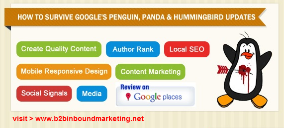 google panda  hummingbird updates